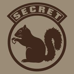 cybersecurity squirrel